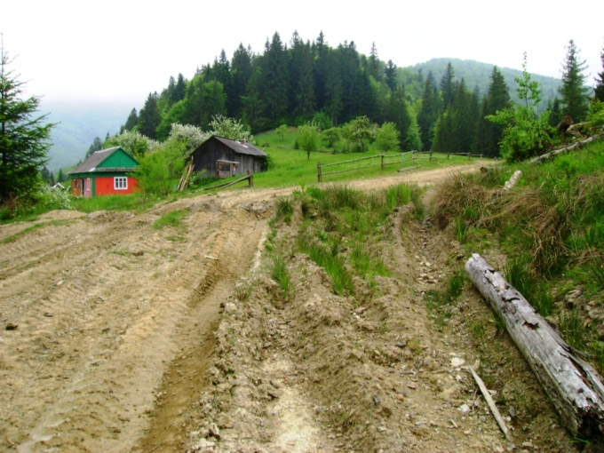 Дорога туди. Карпати. Автор Артур Сіренко